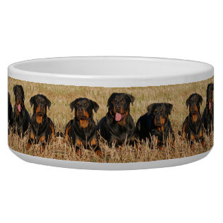 Rottweilers Bowl
