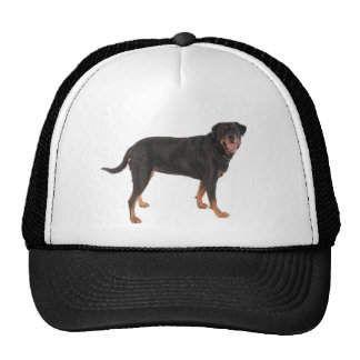 rottweilers mesh hat