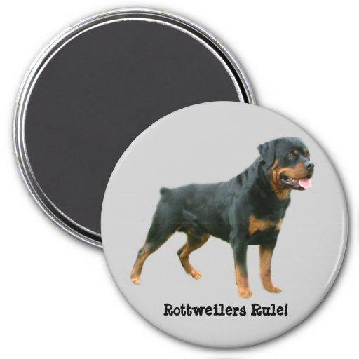 Rottweilers Rule Magnet