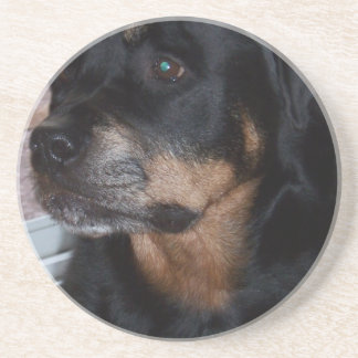 Rottwieler gifts coaster