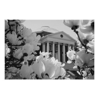 Rotunda and Flowers Poster