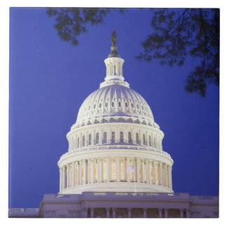 Rotunda of U.S. Capitol at night, Washington Tile