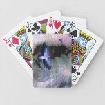 Rotura del día barajas de cartas
