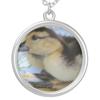 rouen duckling facing left low head round pendant necklace