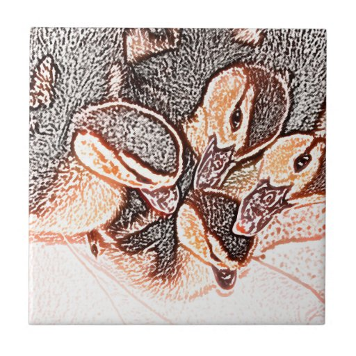 rouen ducklings sketch cute baby duck ceramic tiles