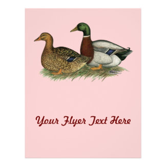 Rouen Ducks Flyer Design