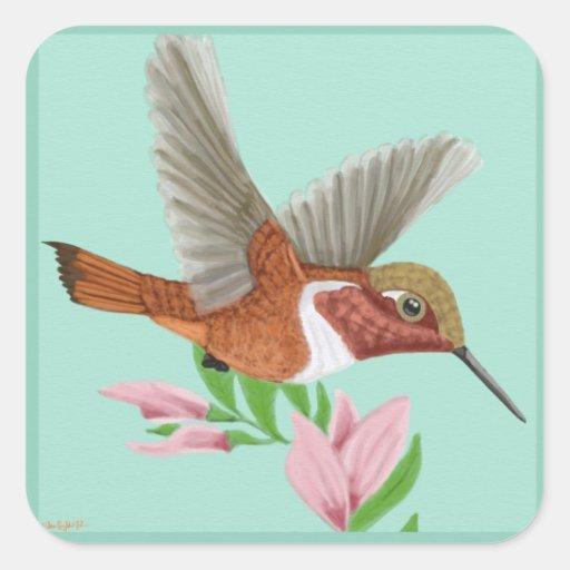 Roufus Hummingbird Square Sticker