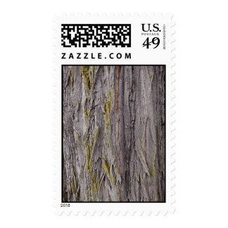 Rough Bark Postage Stamps