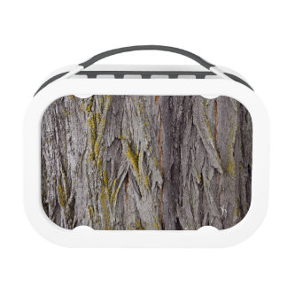 Rough Bark Yubo Lunchboxes