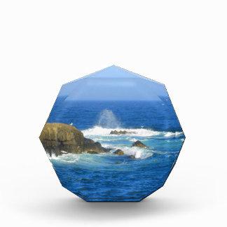 Rough Cape Neddick Coast Acrylic Award
