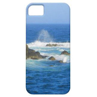 Rough Cape Neddick Coast iPhone SE/5/5s Case