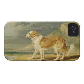 Rough-coated Collie, 1809 (oil on board) iPhone 4 Case-Mate Cases
