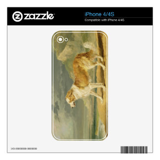 Rough-coated Collie, 1809 (oil on board) Decal For The iPhone 4