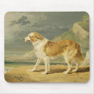 Rough-coated Collie, 1809 (oil on board) Mouse Pad