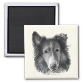 Rough Collie 2 Inch Square Magnet