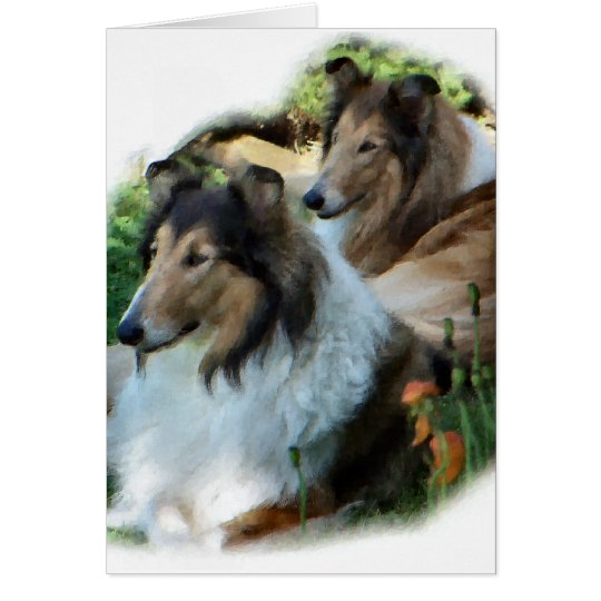Rough Collie Art Gifts Card
