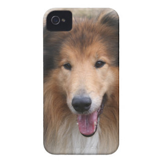 Rough collie dog beautiful blackberry bold case