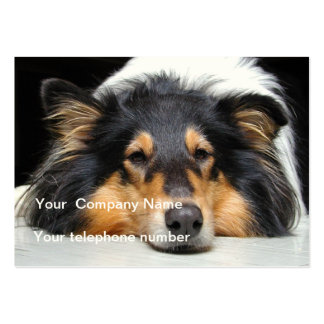 Rough collie dog beautiful custom business card