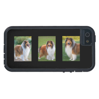 Rough Collie dog lovers photo iphone 5 case