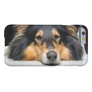 Rough Collie dog lovers photo iphone 6 case