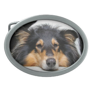 Rough Collie dog nose beautiful photo belt buckle