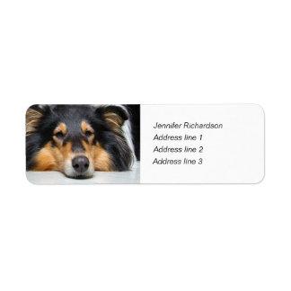 Rough collie dog nose custom return address labels