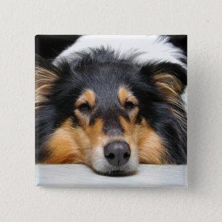 Rough Collie dog nose tri color photo button, pin