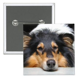 Rough Collie dog nose tri color photo button, pin