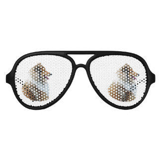 Rough Collie dog portrait photo Aviator Sunglasses