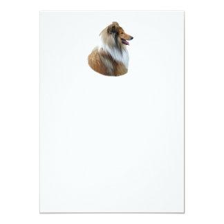 Rough Collie dog portrait photo 5x7 Paper Invitation Card