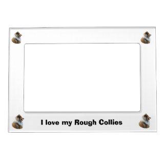 Rough Collie dog portrait photo Photo Frame Magnet
