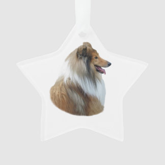 Rough Collie dog portrait photo Ornament