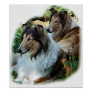 Rough Collie Gift of Art Poster