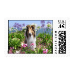 Rough Collie in Flowers Postage Stamp