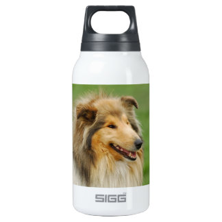 Rough Collie Insulated Water Bottle