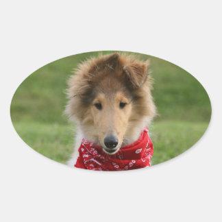 Rough collie puppy dog cute beautiful photo oval sticker