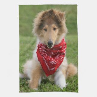 Rough collie puppy dog cute beautiful photo towel