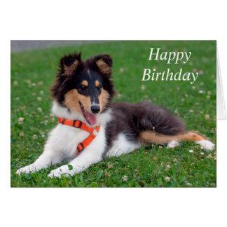 Rough collie puppy dog cute custom birthday card