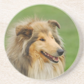 Rough Collie Sandstone Coaster