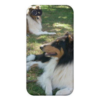 Rough Collies iPhone4 case