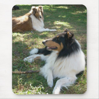 Rough Collies Mouse Pad