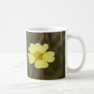 Rough-fruited Cinquefoil Yellow Wildflower Mug Cup