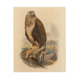 Rough-legged Buzzard Gould Birds of Great Britain Wood Wall Decor