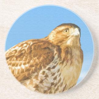 Rough-legged Hawk  Coaster