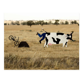 Rough Riding Postcards