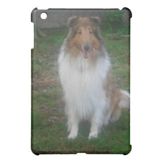 Rough (sable) Collie  Case For The iPad Mini