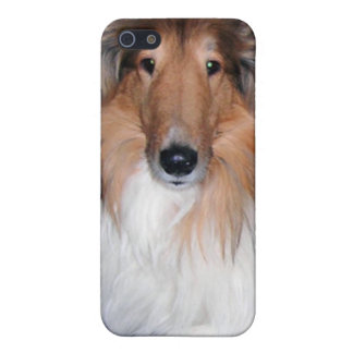 Rough Sable Collie iPhone 4 Case