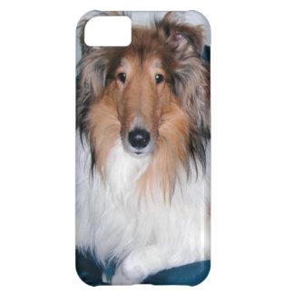 Rough Sable Collie iPhone 5 Case