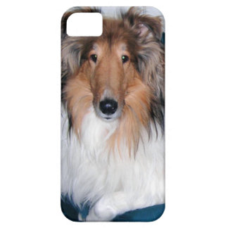 Rough Sable Collie iPhone 5 Case