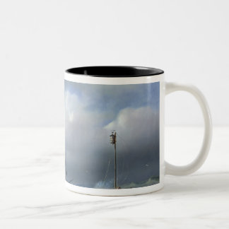 Rough Sea in Stormy Weather, 1846 Mugs